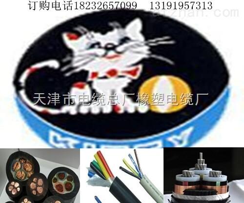户外用电缆直销厂家YCW450/750V-3*95橡胶软线价格