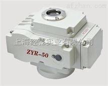 ZYR-100,ZYR-200,ZYR-60,ZYR-400,ZYR-600 电动执行器