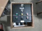 BXT8080-B1壁挂式防爆防腐操作箱