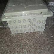 大尺寸800*600不锈钢大尺寸防爆箱体加工定样