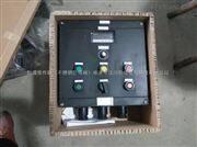 全塑防爆控制箱型号BXK8050-G全塑防爆控制箱.全塑防爆防腐控制箱