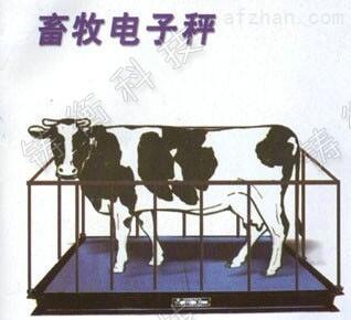 10吨动物电子秤价格