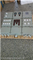 BXM53-2/10K20XX防爆照明配電箱