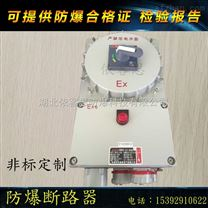 BDZ52-9A/380V/3P防爆防腐断路器