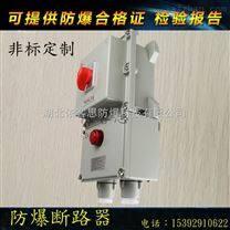 BDZ52-9A/4PL防爆漏电保护断路器