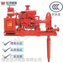 南京汪洋制泵生产的柴油机消防泵