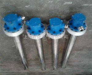 防爆电加热管|电加热器