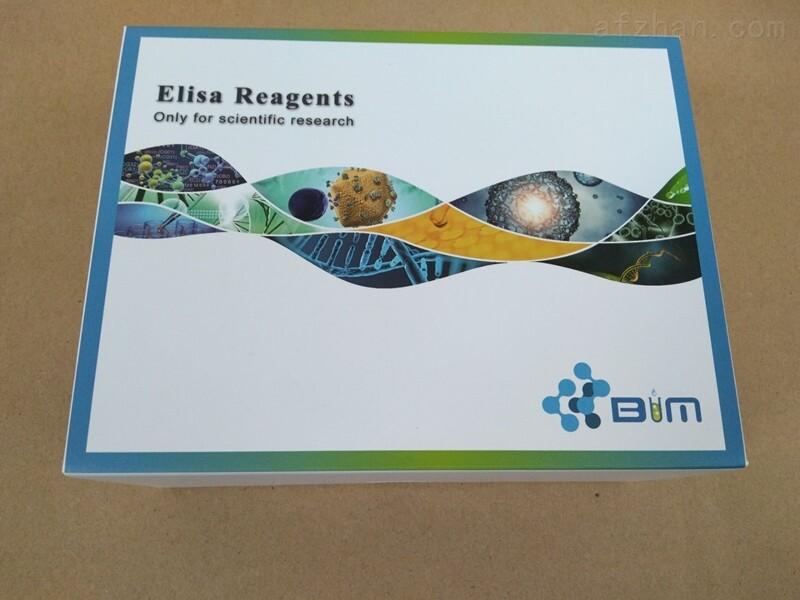 SREBP-1,BIM大鼠固醇调节元件结合蛋白1elisa试剂盒