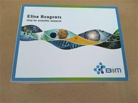 TIMP-4,大鼠基质金属蛋白酶抑制因子4elisa试剂盒