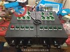BXM8050-T 工程树脂防爆防腐配电箱