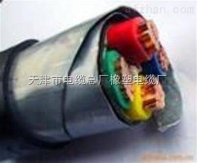 YJV22铜芯电缆 交联电力电缆YJV22-3*35-1*16价格