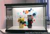 深圳工厂LCD透明液晶展示柜 透明显示广告机 透明屏整机定制