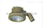 FLH5100防爆免维护LED护栏式照明灯(IIC)