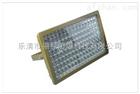 FLT97防爆免维护LED泛光灯