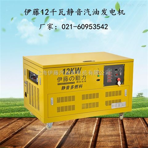 天水市伊藤12KW汽油发电机YT12RGF