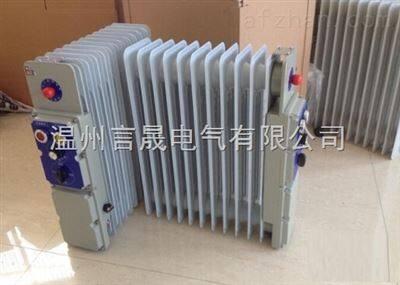 BYT-2.5KW/13P 防爆电暖气 防爆取暖器
