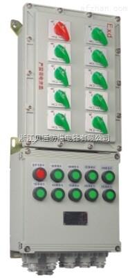 BXM(D)-DIP系列粉尘防爆配电箱(DIP A20)