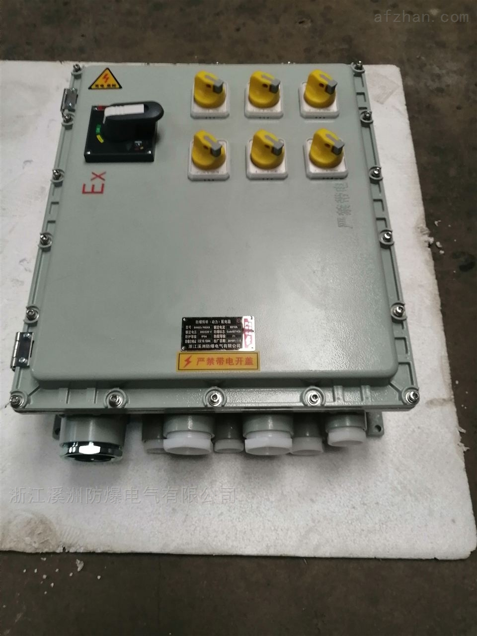 防爆动力配电箱检修箱