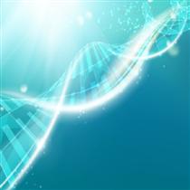 奈韦拉平纳米混悬液在小鼠体内药代实验外包