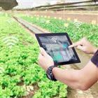 农业大棚农田自动化智能灌溉控制节水系统