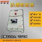 BLK52-16/380防爆空氣開關斷路器隔爆型IP65