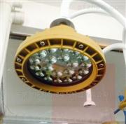 BAD51系列隔爆型防爆燈