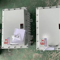 BXD-600*800*300防爆电源箱报价