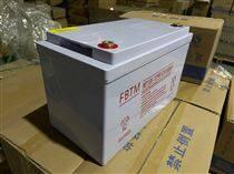 法比特蓄電池NP100-12規格參數