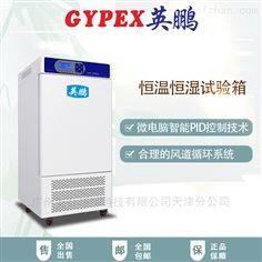 YP-250G宣城制药厂恒温恒湿箱