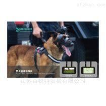 警犬訓練追蹤儀